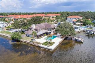 Single Family for sale in 100 KLOSTERMAN ROAD W, Palm Harbor, FL, 34683