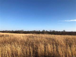 Land for sale in 0 Madison 207 Tract #5, Fredericktown, MO, 63645
