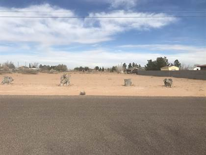Lots And Land for sale in 13171 AYLA Road, El Paso, TX, 79938