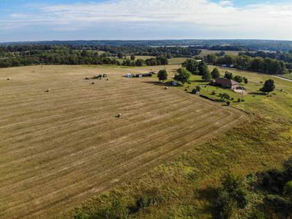 Farm And Agriculture for sale in 591 South Farm Road 45, Greater Bois D'Arc, MO, 65612
