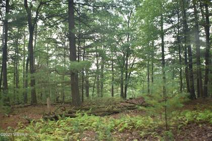 Lots And Land for sale in INDIAN CAMP RUN ROAD, Renovo, PA, 17764