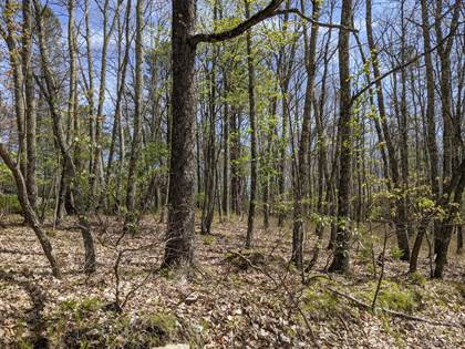 Lots And Land for sale in 338 Lower Seese Hill Rd, Canadensis, PA, 18325