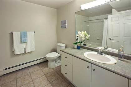 Apartment for rent in 1663 Brunswick Street, Halifax, Nova Scotia, B3J 3Z6