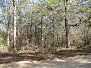 Land for sale in 00 GRAND QUIVIERA Circle, Alford, FL, 32448