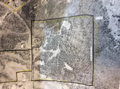 Lots And Land for sale in Tract 3 Bailey Loop Road, Russellville, AR, 72802