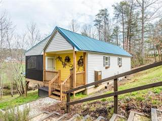 Single Family for sale in 145 Violet Lane, Old Fort, NC, 28762