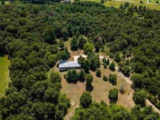 Single Family for sale in 25337 E COUNTY RD 2600 N Route, Manito, IL, 61546