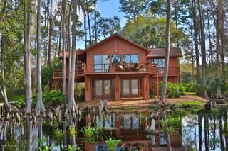 Single Family for sale in 230 NE 142nd Avenue, Silver Springs, FL, 34488