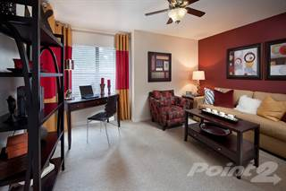Apartment for rent in Enclave at Northwood - C1, Clearwater, FL, 33759