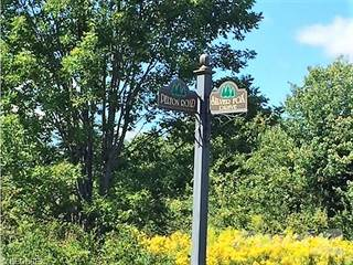 Land for sale in Silver Fox Drive, Austinburg, OH, 44010