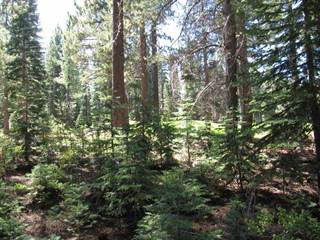 Land for sale in 15146 Swiss Lane, Truckee, CA, 96161
