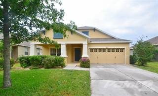 Houses & Apartments for Rent in Mount Dora FL - From $650 a month ...