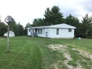 Single Family for sale in 5426 WINCHESTER WAY, Gladwin, MI, 48624