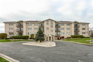 Condo for sale in 9750 Koch Court 2E, Orland Park, IL, 60467