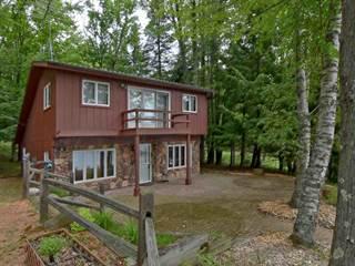 Single Family for sale in 18004 MUNGER LAKE Lane, Lakewood, WI, 54138