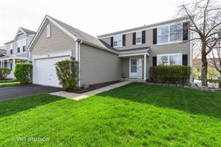 Single Family for sale in 164 Lisk Drive, Grayslake, IL, 60030