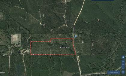 Lots And Land for sale in 0 John Thompson, Richton, MS, 39476