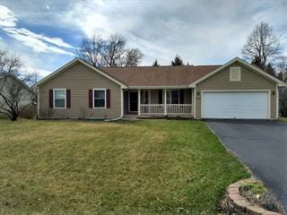 Single Family for sale in 166 Old Meadow, Rockton, IL, 61072