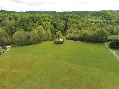 Lots And Land for sale in 0 Margaret St, South Shore, KY, 41175