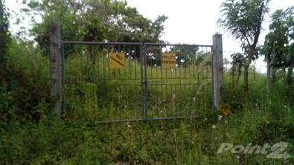 Lots And Land for sale in Bgy. Patotong Malaki, Tagaytay City, Tagaytay, Cavite