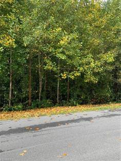 Lots And Land for sale in 03 Hickory Forest Drive, Asheboro, NC, 27203