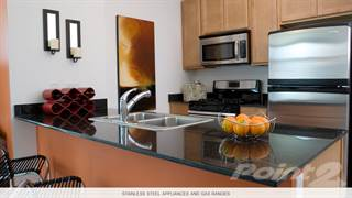 Apartment for rent in Alta at K Station - East Tower - 1 Bed - Plan 05, Chicago, IL, 60654