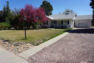 Single Family for sale in 414 15th Street, Canon City, CO, 81212
