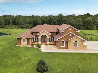 Single Family for sale in 1723 HIDDEN PALMS DRIVE, Davenport, FL, 33897