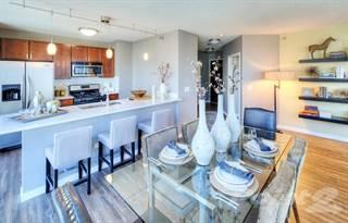 Apartment for rent in 357 E Ohio St, Chicago, IL, 60611