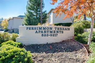 Apartment for rent in Persimmon Terrace Apartments, Auburn City, CA, 95603