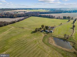 Farm And Agriculture for sale in 410 ALDOTS LANE, Sudlersville, MD, 21668