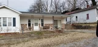 Single Family for sale in 220 Jefferson St., Cave-In-Rock Village, IL, 62919