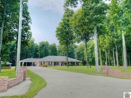 Residential Property for sale in 1425 Old Hickory Road, Kirksey, KY, 42054