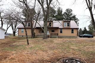Single Family for sale in 8669 Unionville Road, Brookport, IL, 62910