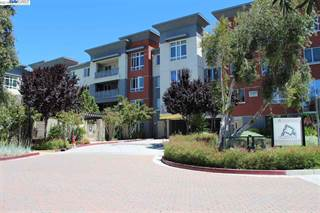 Condo for sale in 1101 S Main St 334, Milpitas, CA, 95035