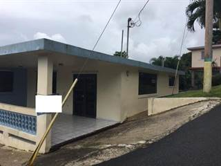 Single Family for sale in 0 CARRETERA 472 RAMAL 734 KM 5.5, Cidra, PR, 00739