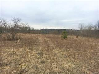 Land for sale in 0000 B Hidden Lake Trail, Brandon Township, MI, 48462