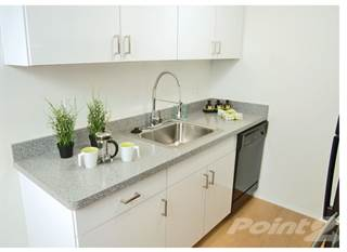 Apartment for rent in Metropolitan Lafayette - 1 BR 1 BATH SMALL, Royal Oak, MI, 48067