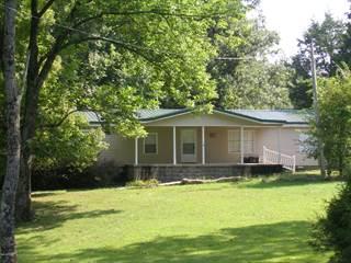 Single Family for sale in 2965 Gilead Church Road, Simpson, IL, 62985
