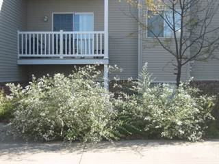 Apartment for rent in 125 East Washington Street, IA, 50213