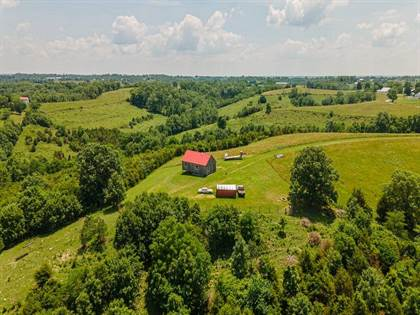 Lots And Land for sale in 1781 Dahms Road, Falmouth, KY, 41040