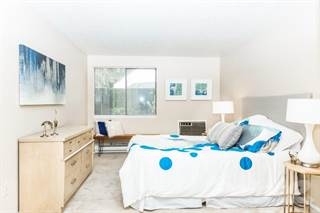 Apartment for rent in Yarrowood Highlands, Bellevue, WA, 98004