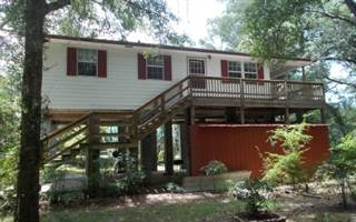 Single Family for sale in 340 NE TRERSTLE DR, Mayo, FL, 32066