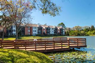 Apartment for rent in The Park at Gibraltar - Cypress, Clearwater, FL, 33765