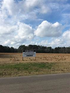 Lots And Land for sale in 000 Hwy 184 West & MLK Drive, Waynesboro, MS, 39367