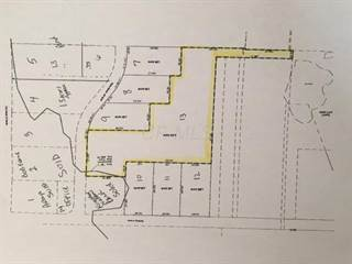 Comm/Ind for sale in 0 Union Street, South Bloomfield, OH, 43103
