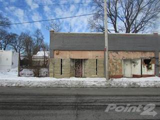 Comm/Ind for sale in 9917 E Forest Ave, Detroit, MI, 48214