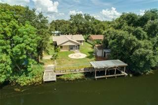 Single Family for sale in 27751 LISA DRIVE, Tavares, FL, 32778