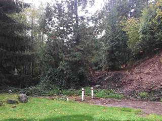 Land for sale in 4567 MAYSFIELD CRESCENT, Langley Township, British Columbia