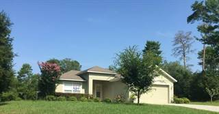 Single Family for sale in 13644 SW 39TH COURT, Ocala, FL, 34473
